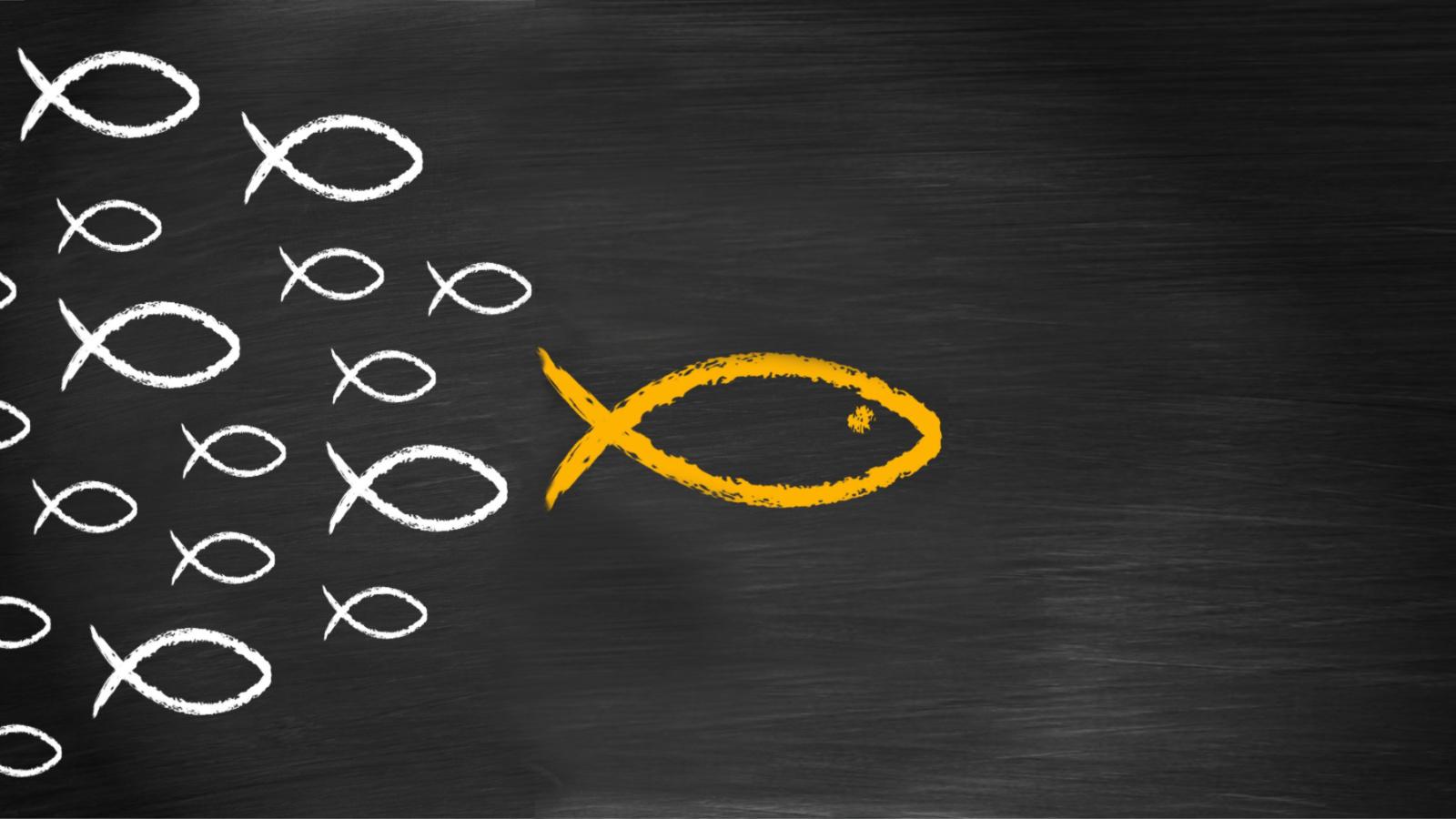how to keep volunteers empowering Christian leadership